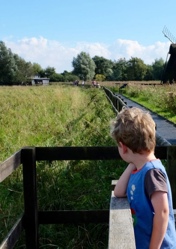 Wicken Fen, two ways