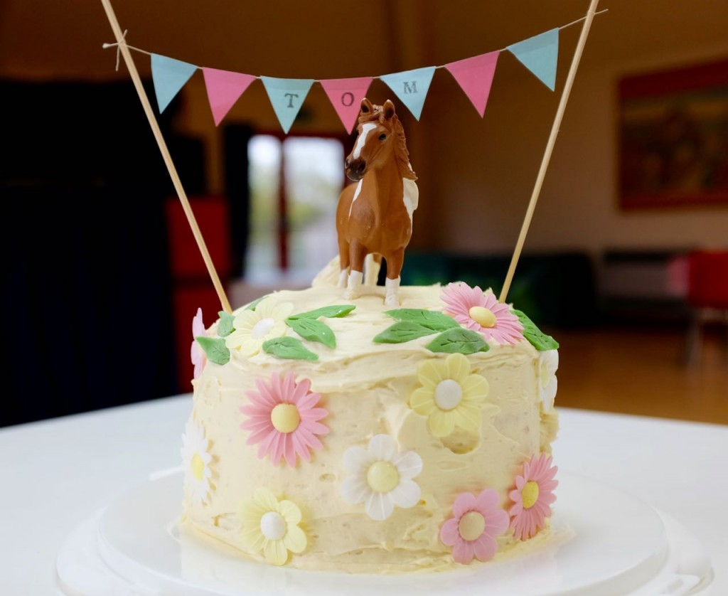 Pony party birthday cake