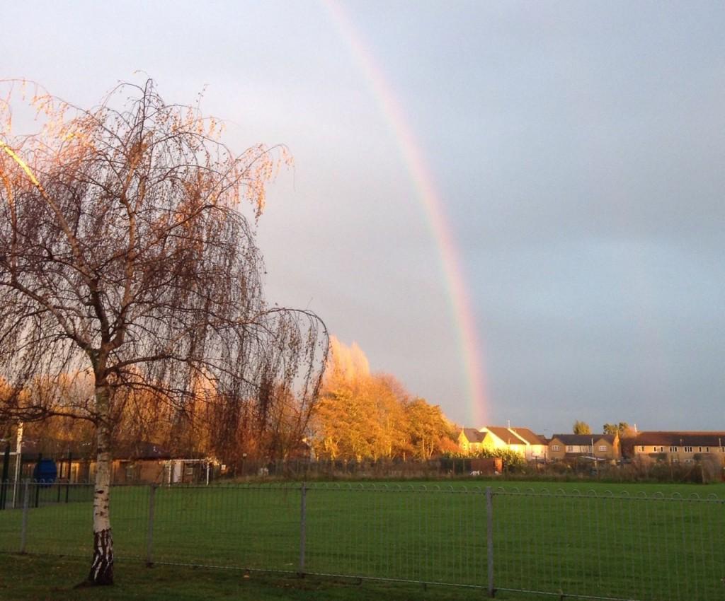 November rainbow