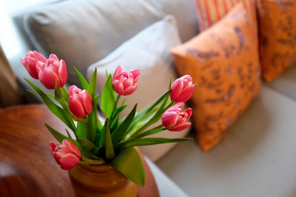 Cushions and tulips