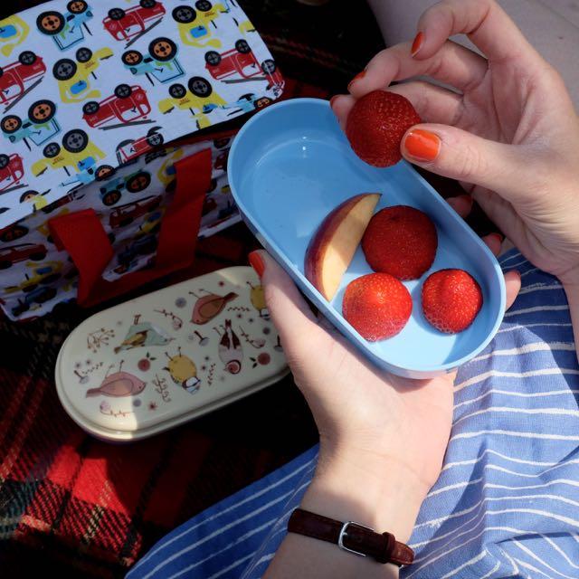 Marmalade Pie Bento lunchbox