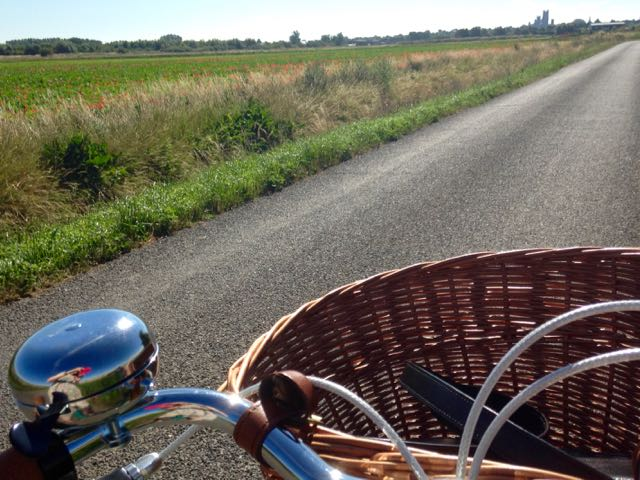 Ely to Coveney bikeride, Fenland in summer