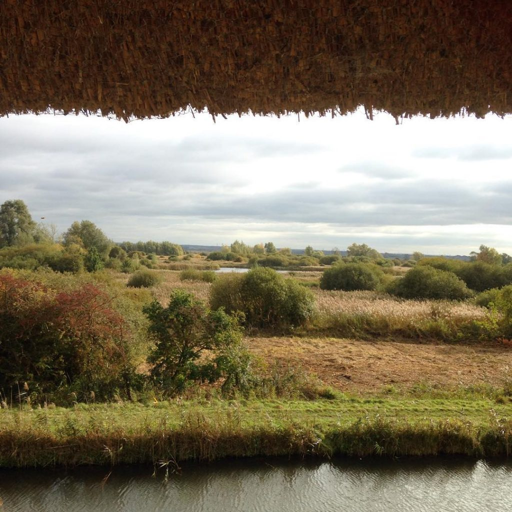 Wicken Fen in October