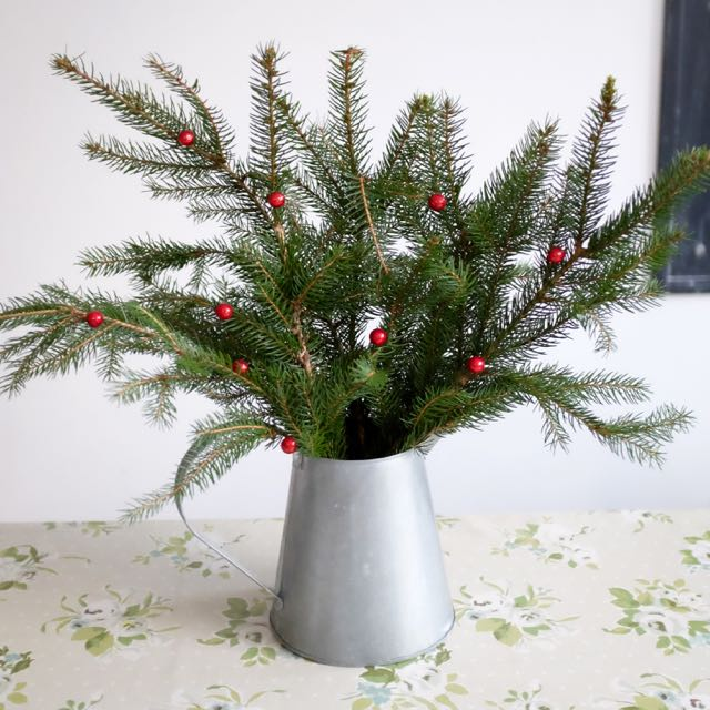 Christmas tree in a jug