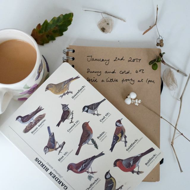 Start a nature diary