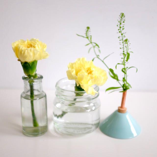 Simple flower arrangement for carnations