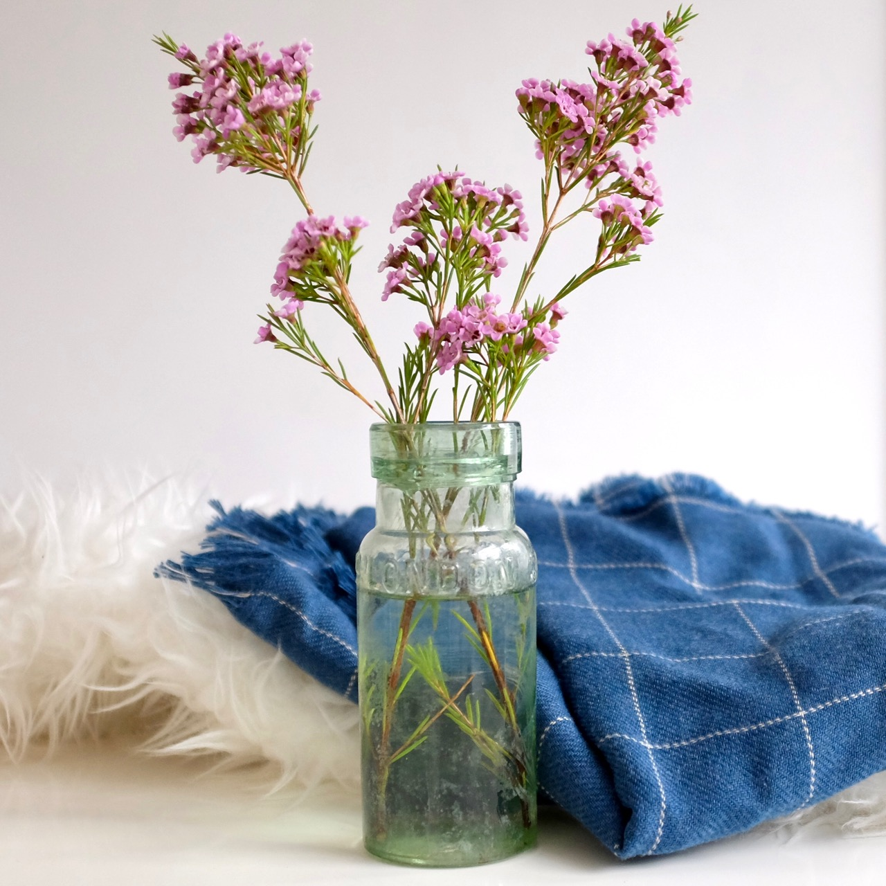 Pink waxflowers in old glass jar