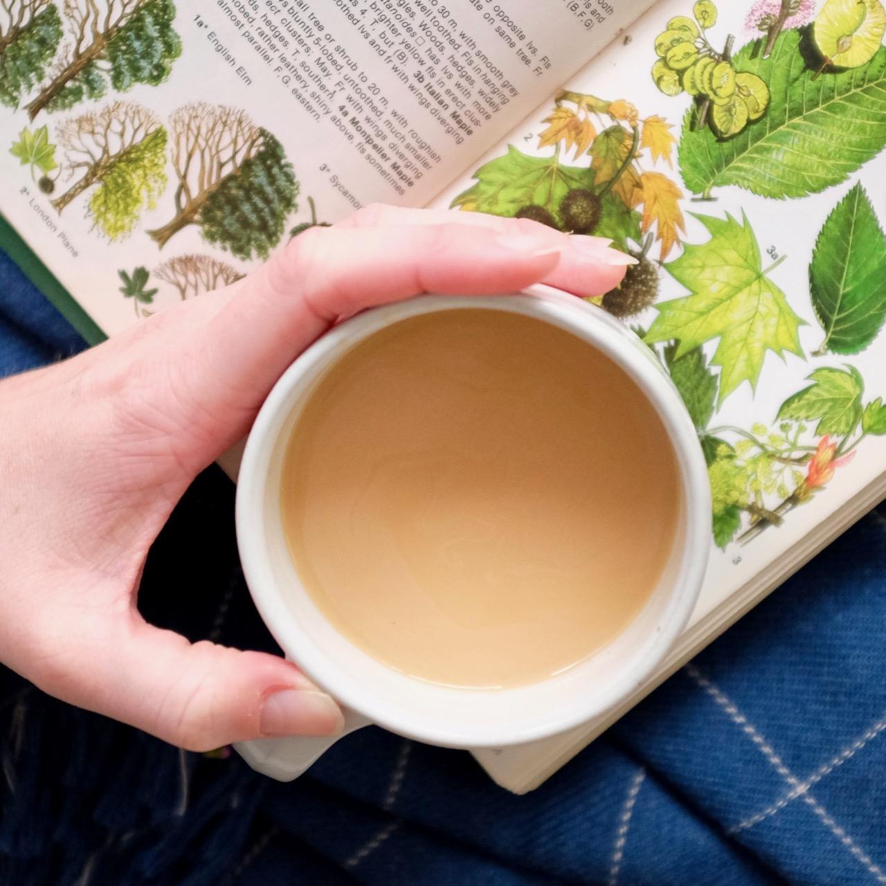 Tea and an autumn book