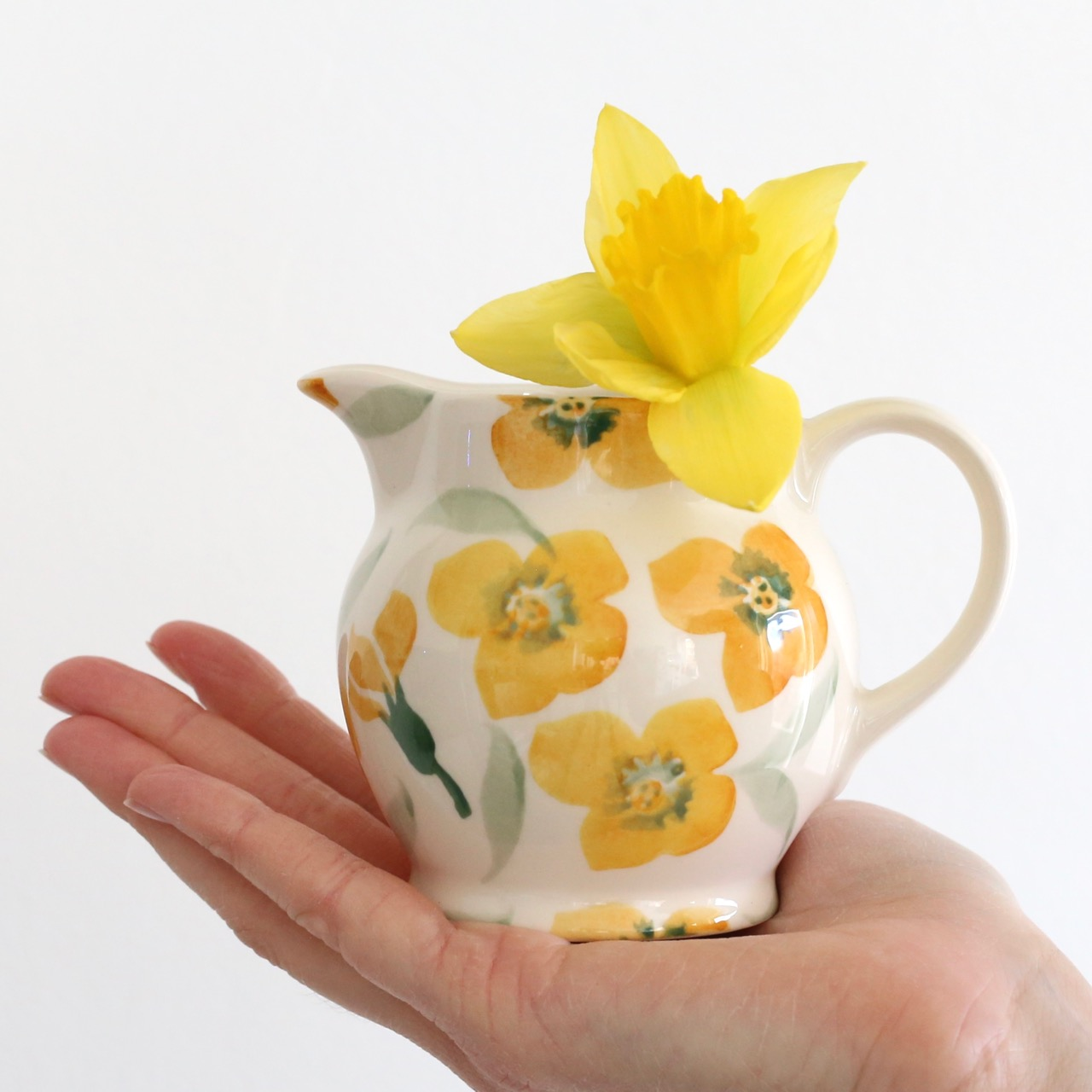 Daffodils in Emma Bridgewater jug