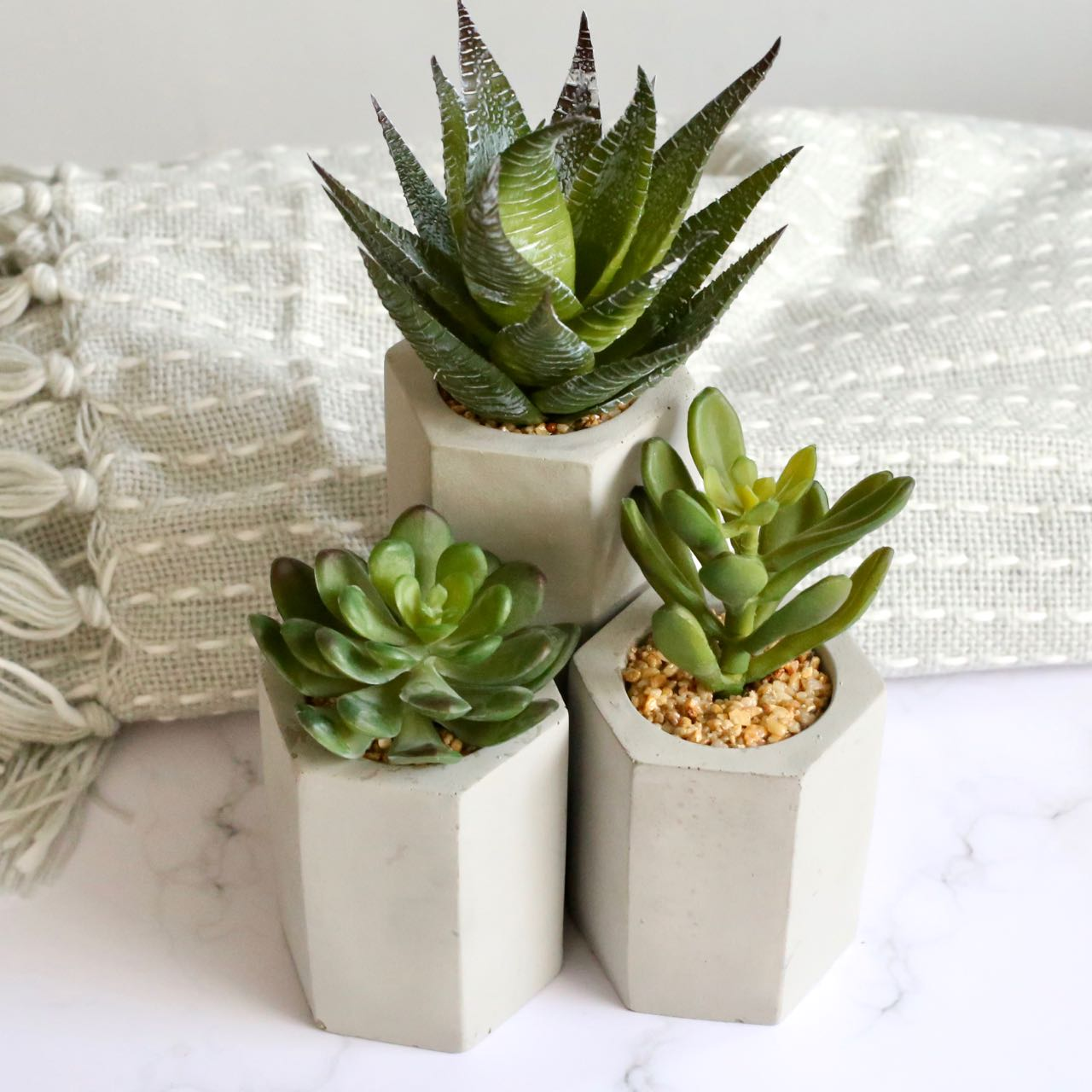 Sainsbury's Home faux succulents