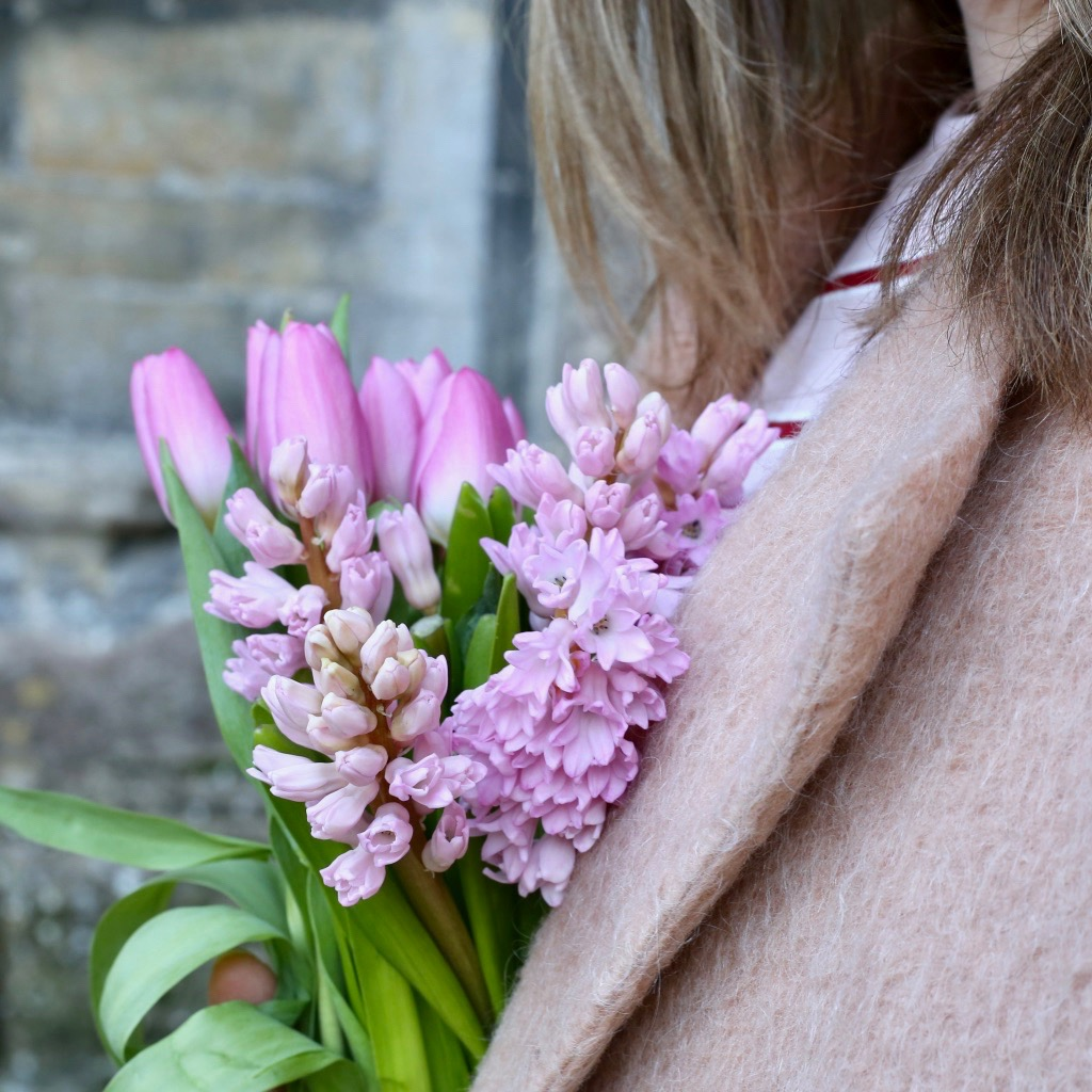 Pink hyacinths and tulips