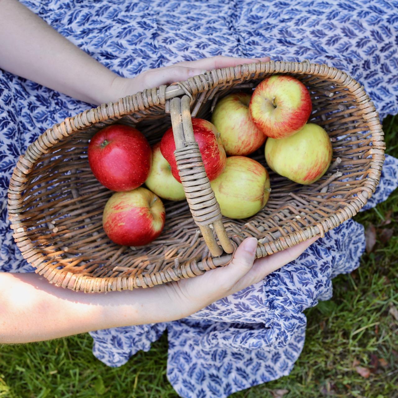 English apples